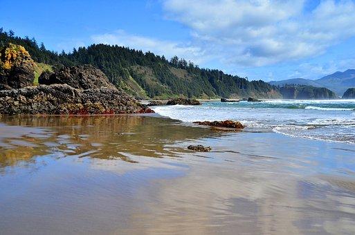 Beach, Coast, Northwest, Sand, Water, Sea, Ocean