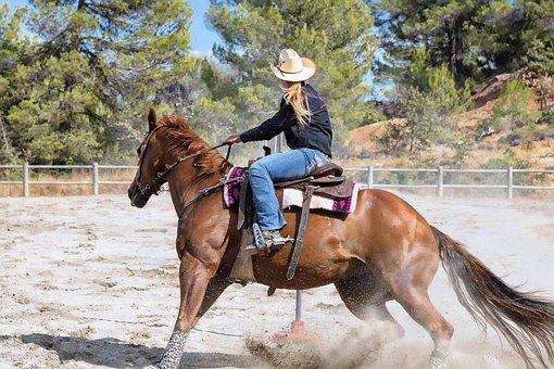 Horse, Mane, Equine, Shoe, Horseback Riding, Animal