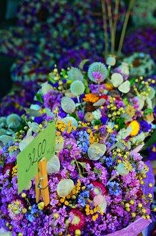 Dried Flower, Color, Wreath, Decoration, Mood, Frame