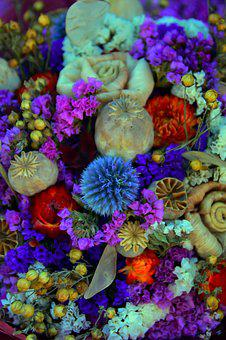 Dried Flower, Color, Wreath, Decoration, Mood, Frame