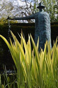 Gardens, Flowers, Rabbits, Flower Garden, Spring