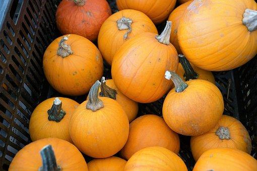 Pumpkins, Vegan, Healthy, Eat, Cook, Market, Sale