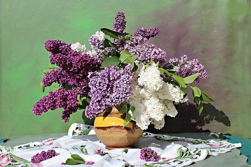 Lilac Bouquet, Lilac Flower, Still Life, Nature