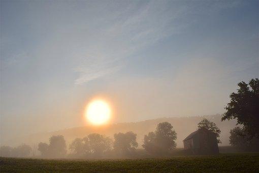 Foggy, Morning, Field, Landscape, Nature, Fog, Mist