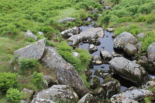 Bach, Stones, Meadow, Ireland