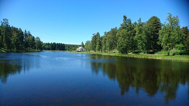 Lake, Nature, Church, Water, Tree, Beautifully, Idyll