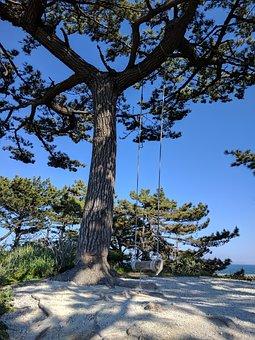 Beach, Swing, Wood, Blue Sky