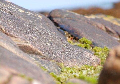 Rock, Stone, Ireland, Sea, Water, Nature