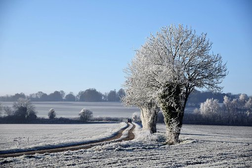 Landscapes, Normandy, France, Field, Winter, Snow