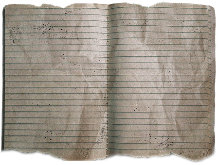 Dirty, Notebook, Eaten On, Damaged, Used