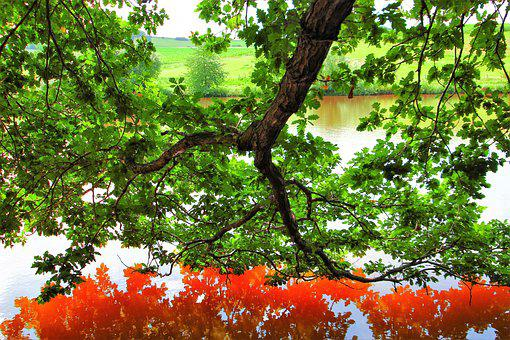 Mirroring, Water, Red, Reflection, Landscape, Nature