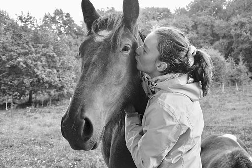 Kiss, Kisses, Horse, Girl, Young Woman, Complicity
