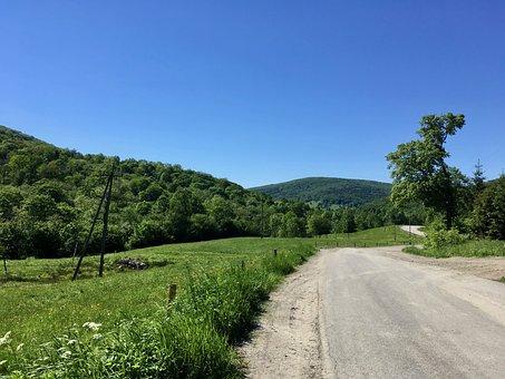 Hiking Trail, Bike, Way, Tree, Poland, Field