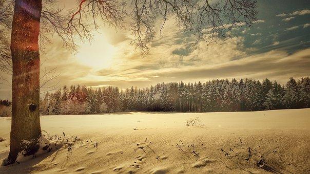 Winter, Snow Landscape, Nature, Landscape, Wintry, Cold