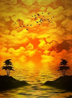 Birds, Palm Trees, Island, Clouds, Background, Sky