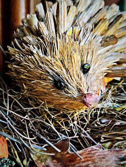 Hedgehog, Straw Hedgehog, Autumn, Decoration