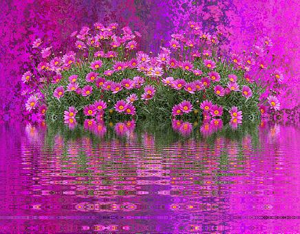 Flowers, Nature, Flower Purple, Garden, Sea Of Flowers