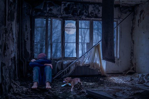 Young People, Alone, Sad, Dog, Room, Lost Place