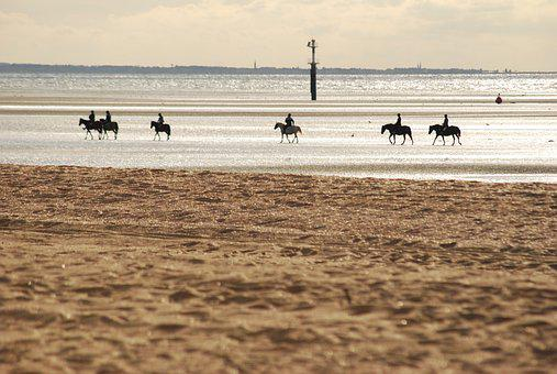 Normandy, Houlgate, Beach, Horse, France