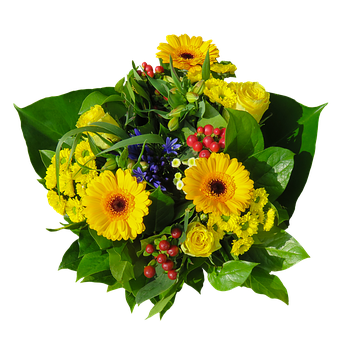 Flowers, Bouquet, Isolated, Floral Greeting, Yellow