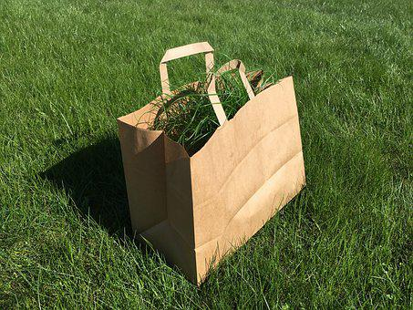 Bag, Grass, Green, Background, Garden, Outside, Waste