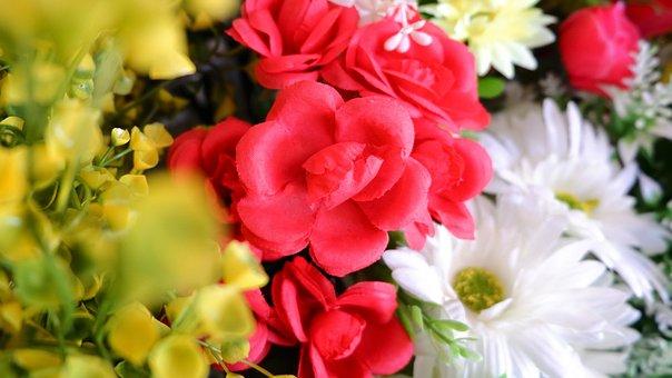 Flowers, Plastic, Fake Flowers