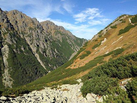 Mountains, Tatry, Autumn, Landscape, Nature