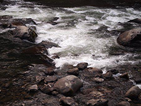 River, Stream, Water, Nature, Scenic, Vibrant, Outdoors