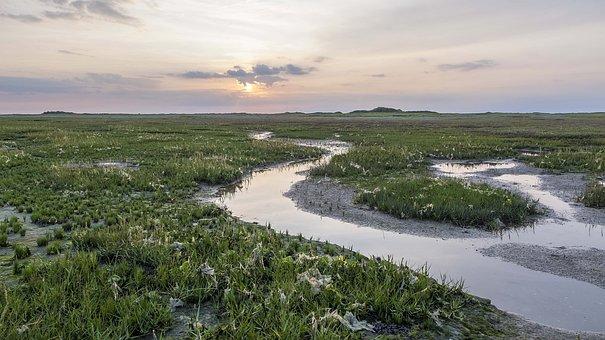 Schiermonnikoog, Sands, Nature, Kwelder, Dutch, Horizon