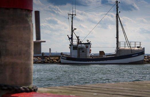 Fishing Vessel, Cutter, Port, Wooden Boat, Shrimp