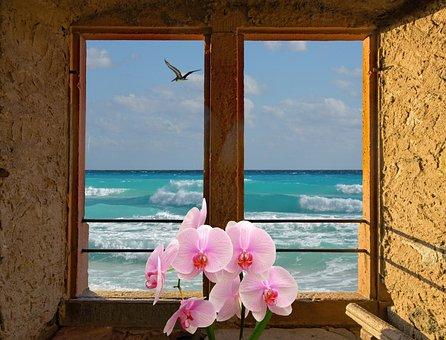 Landscape, Window, Lake, Sea, Nature, Mood, View