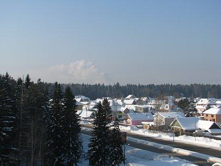 Winter, Frost, Forest, Efi, Pine, Sky, Blue, Winter Sun