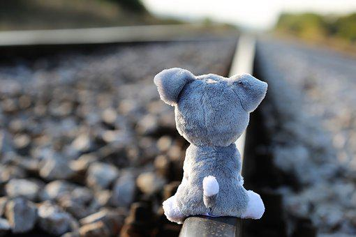 Stop Children Suicide, Teddy Bear Waiting, Lost Friend