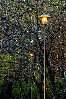 Park, Autumn, Golden, Foliage, Lamp, Evening, Bolko