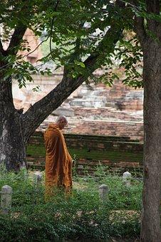 Monk, Munk, Thailand, Buddhism, Orange, Monastery