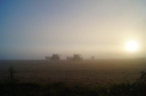 Rural, Harvest, Fall, Golden, Sunset, Countryside