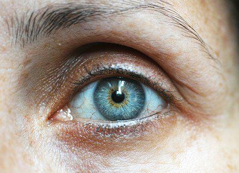 Eyebrow, Eyelash, Human Eye, Human Face, Close-up