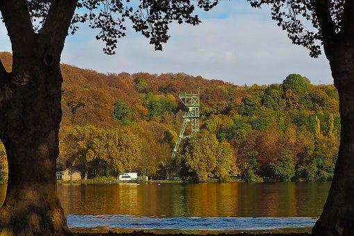 Lake, Autumn, Nature, Trees, Landscape, Forest