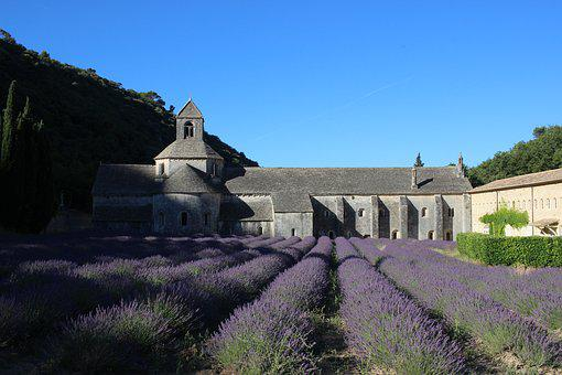 France, Provence, Monastery, Hidden, Lavender, Field