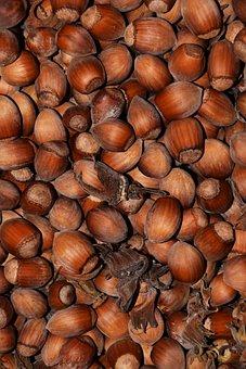 Hazelnuts, Nuts, Background, Food, Eat, Brown, Nutshell