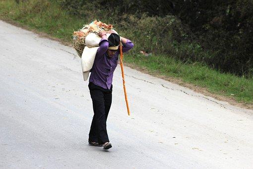 Peasant, Worker, Colombian, Field, Workers, People
