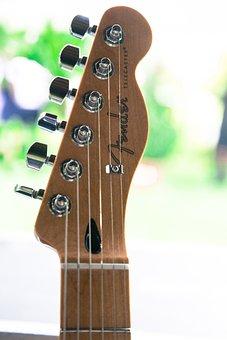 Music, Tools, Guitar, Fender, Feast, Concert