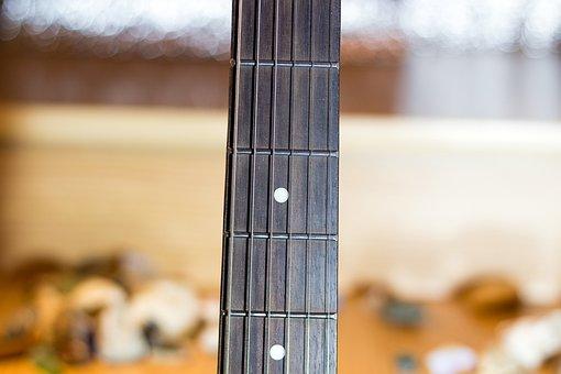 Guitar Neck, Vulture, Strings, Frets