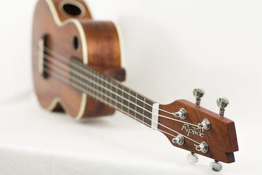 Ukulele, Instrument, Music, String, Acoustic, Wood