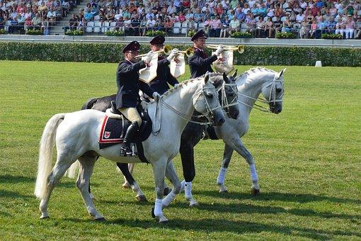 Ride, Horses, Mold, Music, Instruments, Stallion Parade