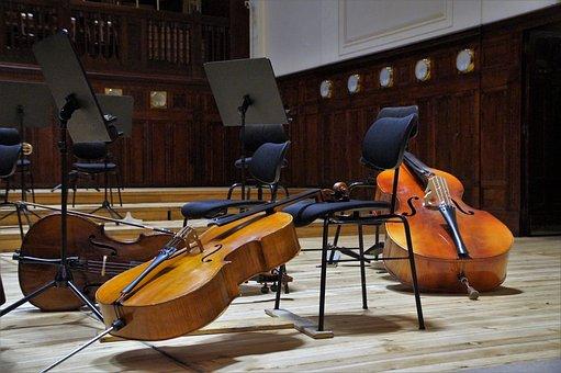 Bass, Double Bass, Musical Instrument, Concert, String