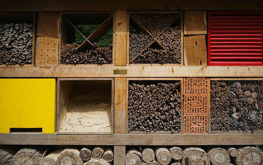Insect House, Insect, Home, Box, Nature Conservation