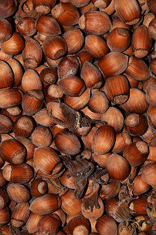 Hazelnuts, Nuts, Background, Food, Eat, Brown, Nutshell