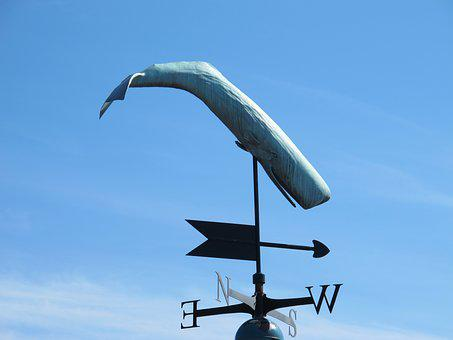Wind Direction Indicator, Wind, Direction, Sky, Whale