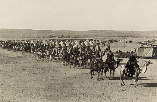 Caravan, Camels, Beersheba, 1915, Black And White